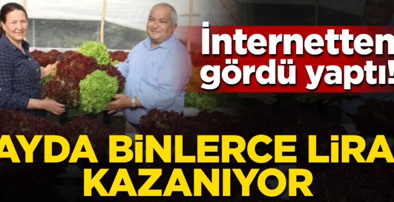 Ev kadını internetten gördüğü topraksız tarım uygulama modelini yaptı: Ayda 4 bin lira kazanıyor