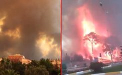 Ciğerlerimiz yanıyor! Orman yangınları neden çıktı? İşte isyan ettiren ihtimal…